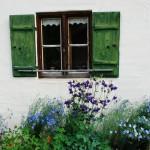Test de jardinería